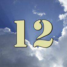 Días del Paso 12 interno