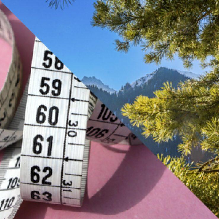 ¿Cuál es la diferencia entre Dieta y Abstinencia? (y 2)